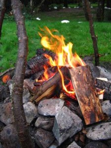 Our fire at Red Squirrel campsite, after a lot of work!