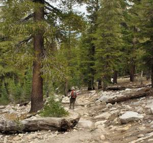 Hikers on the John Muir Trail