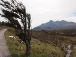 Windy Cuillin