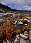 Loch Nevis Beach