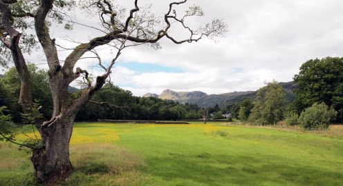 Approaching Elterwater