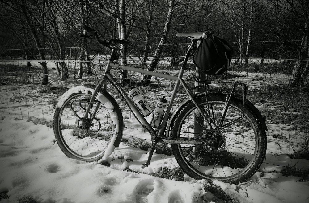 Surly Troll on the Trans Penning Trail